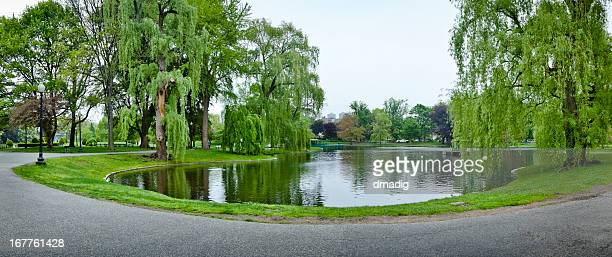 Boston Public Garden, Willows and Pond in Heart of Boston