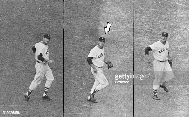 Boston Red Sox outfielder Ted Williams is shown in a six picture sequence during the spitting incident that cost him $5000 in a fine imposed by...