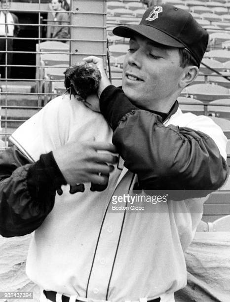 Boston Red Sox player Mike Ryan holds a pigeon on his shoulder at Fenway Park in Boston on Oct 10 1967