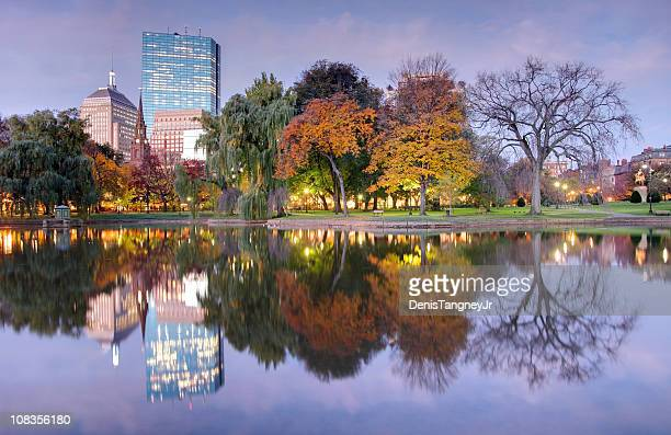 Boston Reflecting on a Small Pond