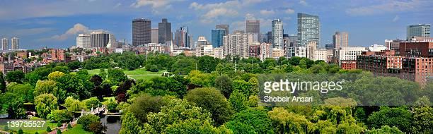 Boston skyline and boston public garden