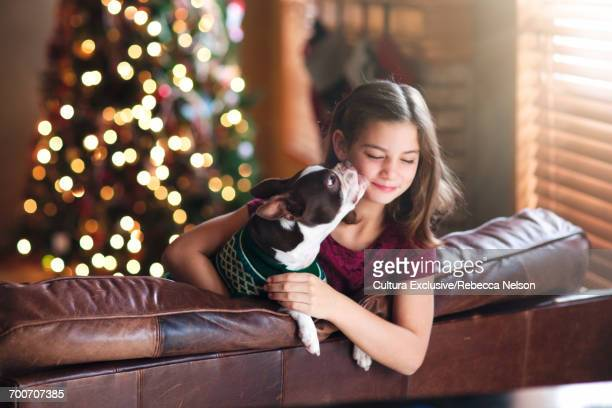 Boston Terrier dog giving little girl a kiss in front of Christmas tree