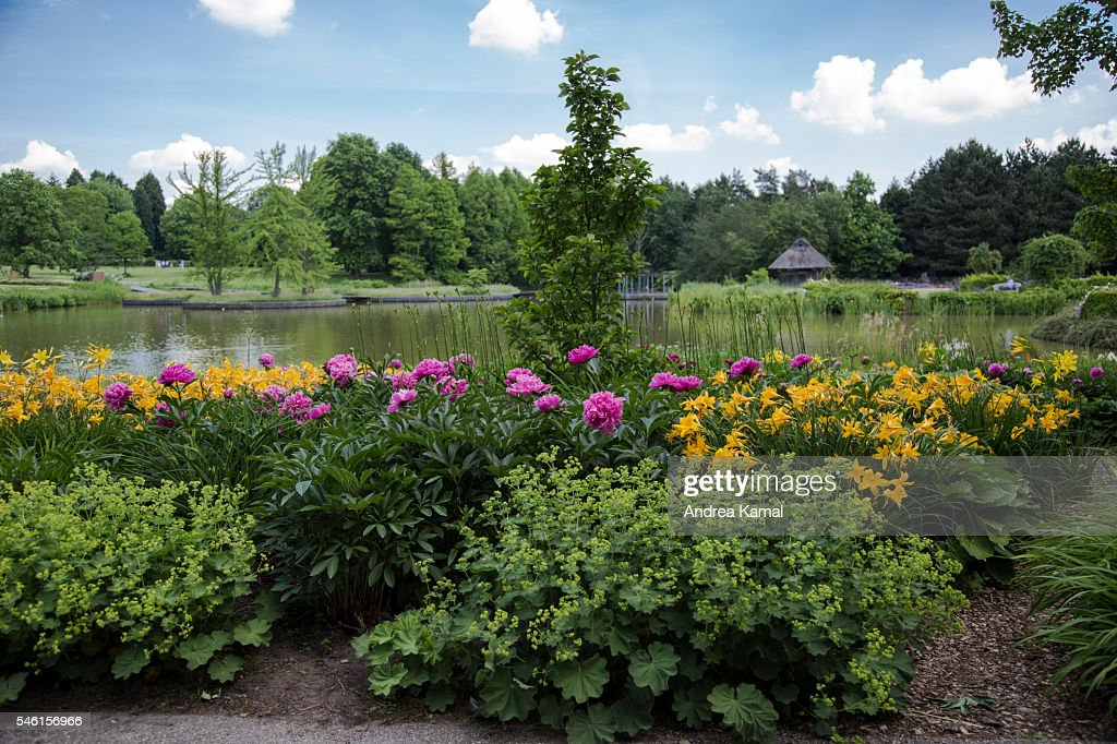 Botancial Garden Botanischer Garten Hamburg Germany Stock Photo