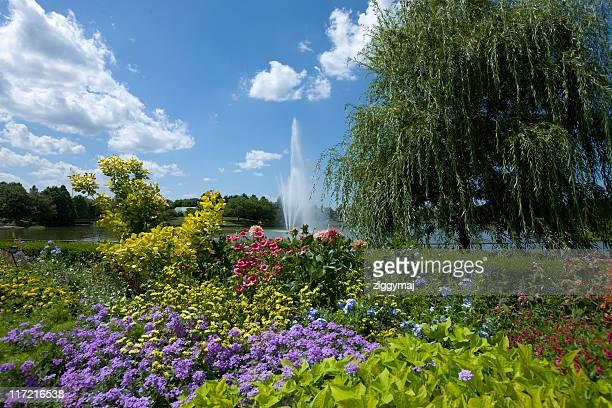 botanic garden - botanical garden stock pictures, royalty-free photos & images