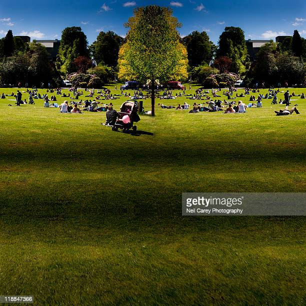 botanic gardens, belfast. - botanical garden stock pictures, royalty-free photos & images