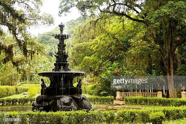 jardins botânico - rio de janeiro - fotografias e filmes do acervo