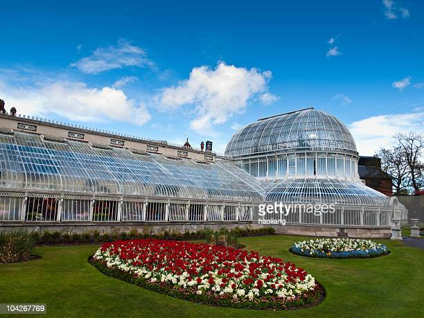 botanic palm house, belfast,northern ireland - botanical garden stock pictures, royalty-free photos & images
