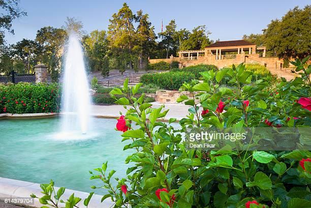 Botanical Garden on a Clear Morning