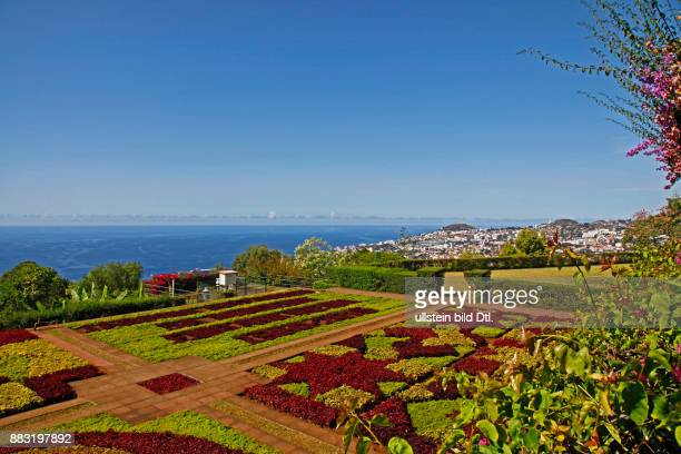 Botanischer Garten Jardim Botânico Funchal Madeira Portugal