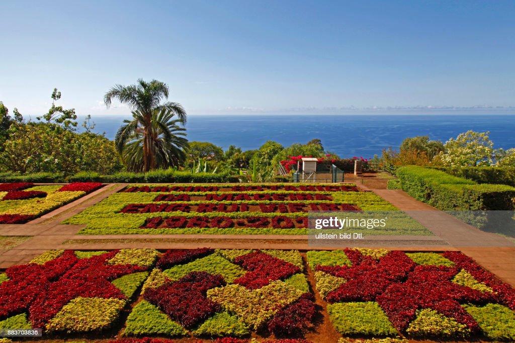 Botanischer Garten Jardim Botânico Funchal Madeira Portugal News