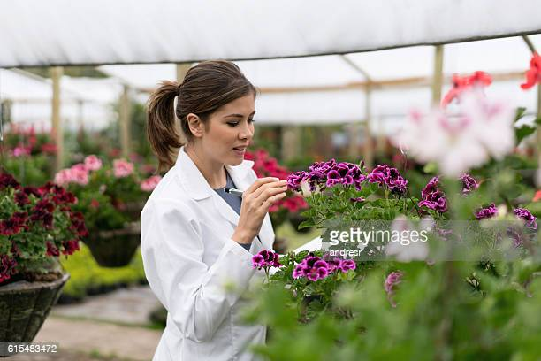Botanist working at a greenhouse