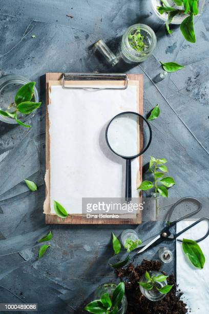 Botanist workplace overhead shot with clipboard, field notes magnifying glass, gardening scissors...