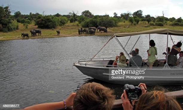 ボツワナ: 象に乗る観光客からのボートにチョベ国立公園