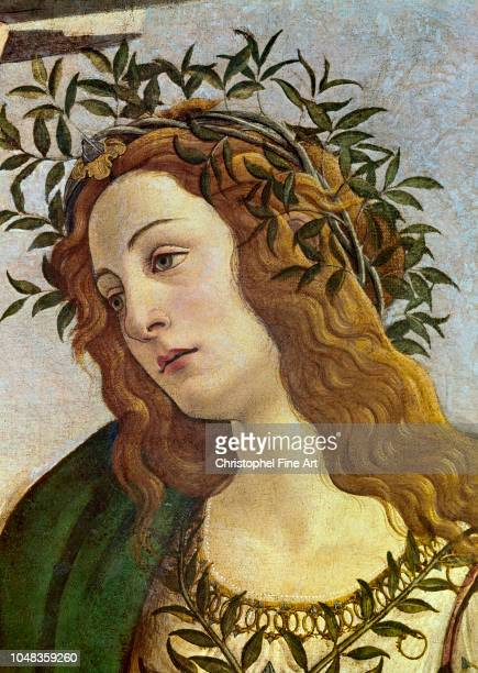 Botticelli Sandro Head of Pallas Uffizi Gallery of Florence