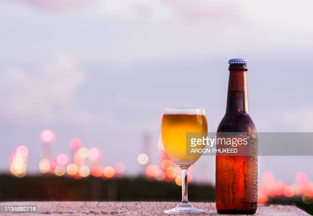 bottle and glass of light beer - ale stock pictures, royalty-free photos & images