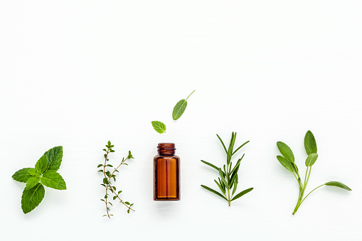 Bottle of essential oil with  fresh herbal sage, rosemary, 637413278