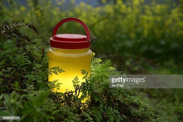 A bottle of honey is put on a land at a rape field in Yingjing County in Sichuan province China on 24th March 2015
