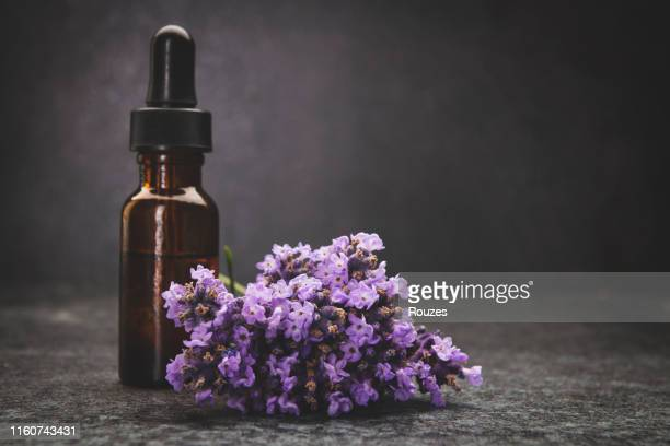 a bottle of lavender essential oil with fresh lavender twigs - essential oil stock pictures, royalty-free photos & images