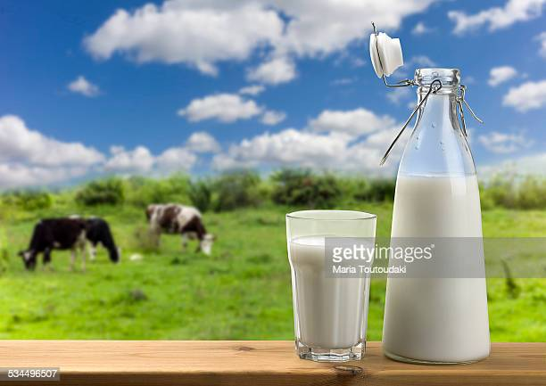 Bottle of milk in a grass field