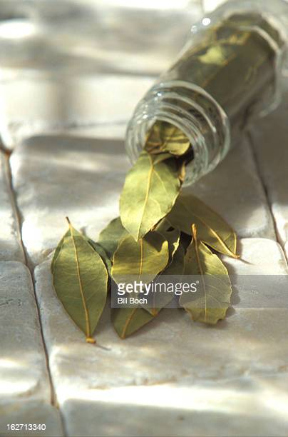 Bottle of spilled bay leaves