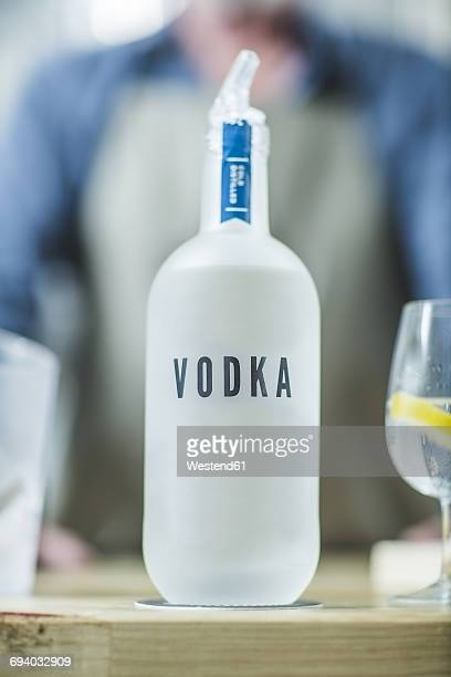 bottle of vodka in distillery - vodka stock pictures, royalty-free photos & images