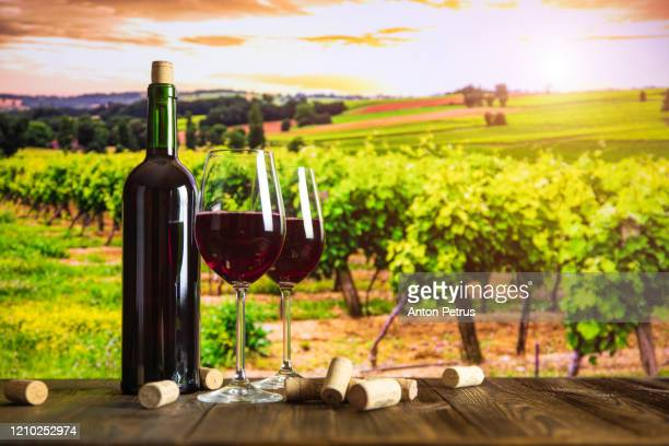 bottle of wine, glasses, cheese and grapes on the background of the vineyard at sunset. - france stock pictures, royalty-free photos & images