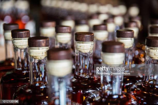 bottles of aged rum sit on a table prior to labeling - distillery stock pictures, royalty-free photos & images