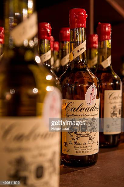bottles of calvados at cidrerie le reine du vicq - calvados stock pictures, royalty-free photos & images
