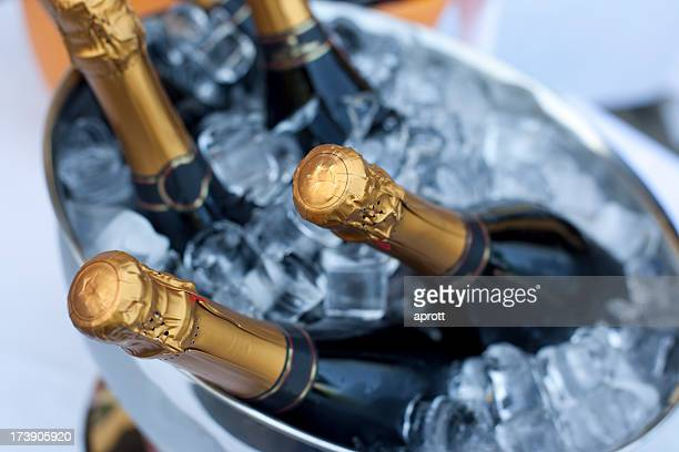 Bottles of Champagne in cooler