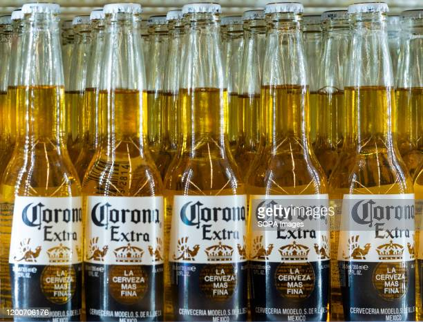 Bottles of Corona beer by Grupo Modelo extra beer are seen on a shelf