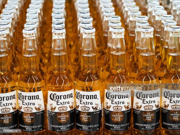 Bottles of Corona beer on a shelf in a store