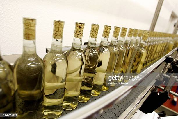 Bottles of Francis Coppola Bianco Pinot Grigio move along a conveyor belt July 12 2006 at the St Supery Winery in Rutherford California A study...