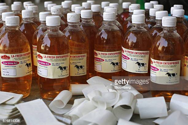 Bottles of labeled cow urine sit on the ground at a processing facility in Greater Noida Uttar Pradesh India on Friday June 17 2016 Urine from...