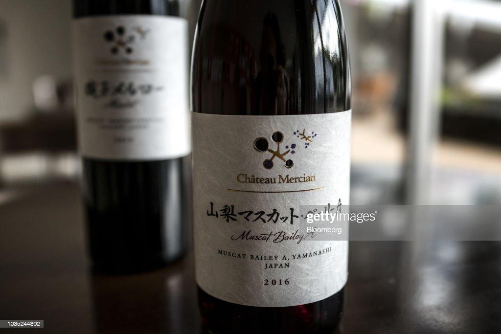 Inside the Chateau Mercian Katsunuma Winery As Japan's Oldest Winemaker Readies for European Grape Onslaught