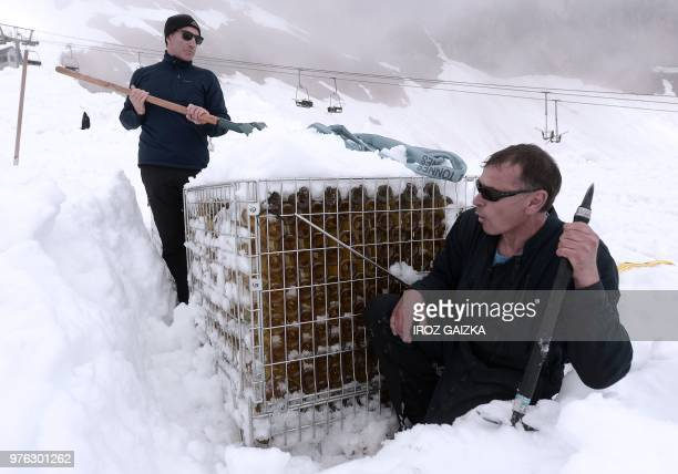 Bottles of wine from the Chateau de Lugey by Bordeaux winemaker Franck Labeyrie are dug out from snow near the ski station in Cauterets Pyrenees...