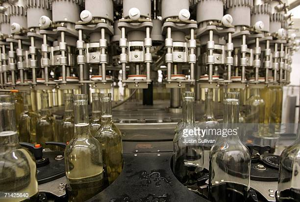 A bottling machine fills bottles of Francis Coppola Bianco Pinot Grigio July 12 2006 in Rutherford California A study published in the Proceedings of...