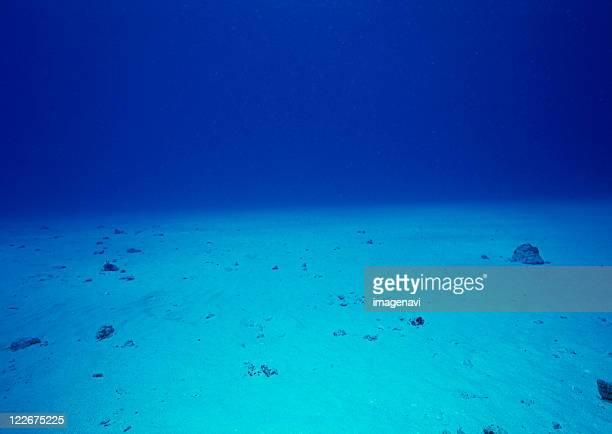 Bottom of Sea