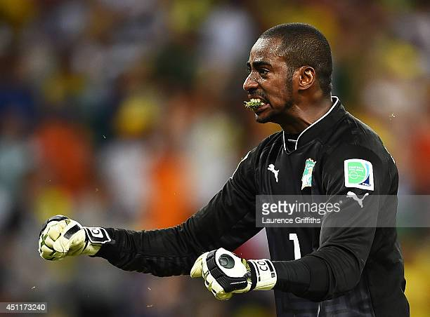 Boubacar Barry of the Ivory Coast celebrates with grass in his mouth after his team's first goal during the 2014 FIFA World Cup Brazil Group C match...