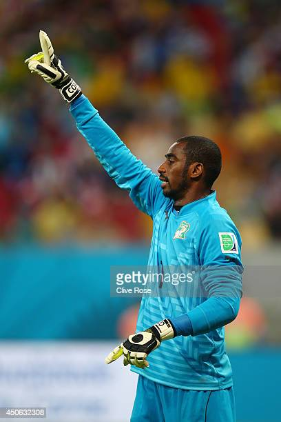 Boubacar Barry of the Ivory Coast gestures during the 2014 FIFA World Cup Brazil Group C match between the Ivory Coast and Japan at Arena Pernambuco...