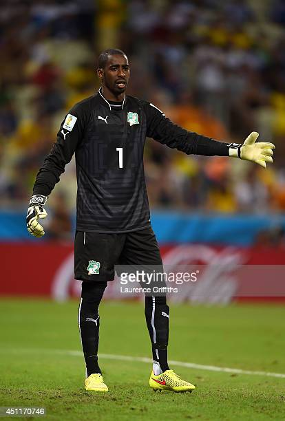 Boubacar Barry of the Ivory Coast looks on during the 2014 FIFA World Cup Brazil Group C match between Greece and the Ivory Coast at Castelao on June...