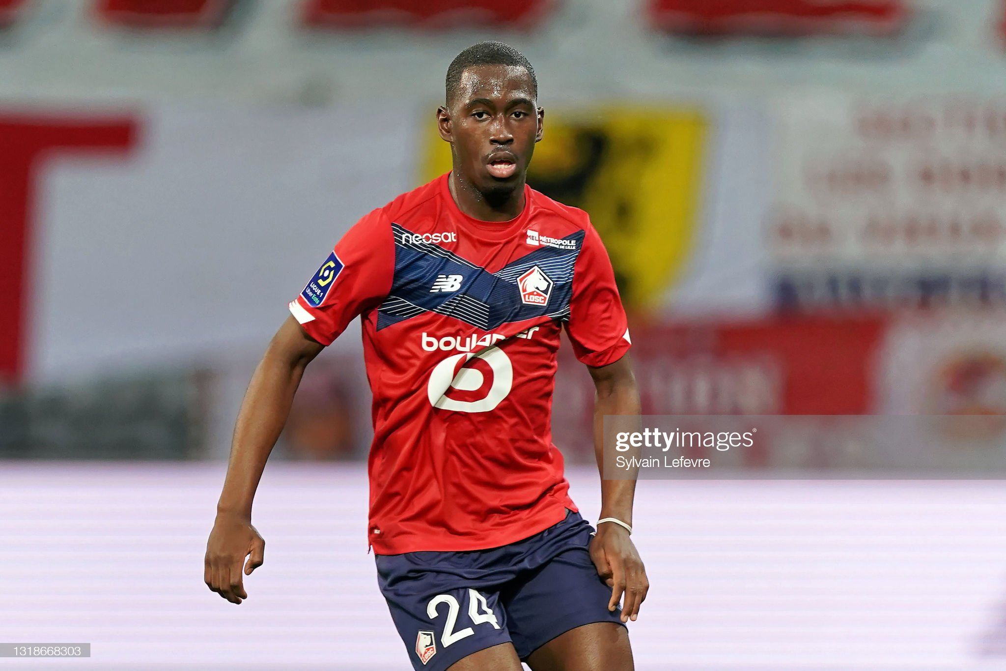 Lille OSC v AS Saint-Etienne - Ligue 1 : ニュース写真