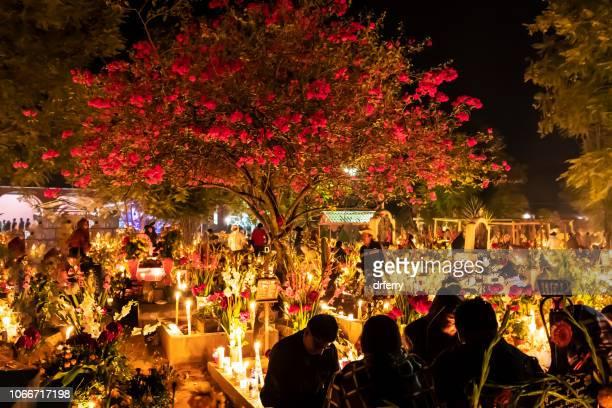 Arbre de bougainvilliers dans le cimetière de San Agustin Etla sur le Día de los Muertos