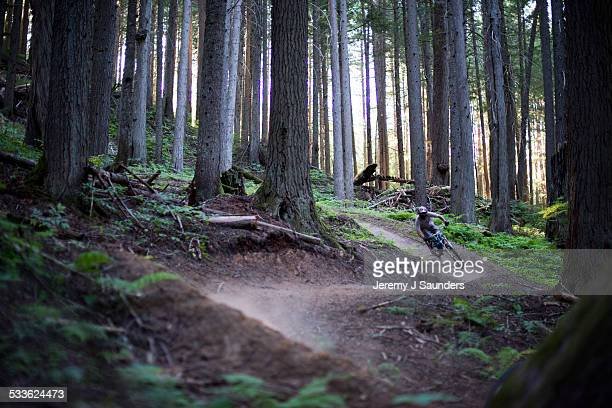 boulder berms - downhill skiing stock pictures, royalty-free photos & images