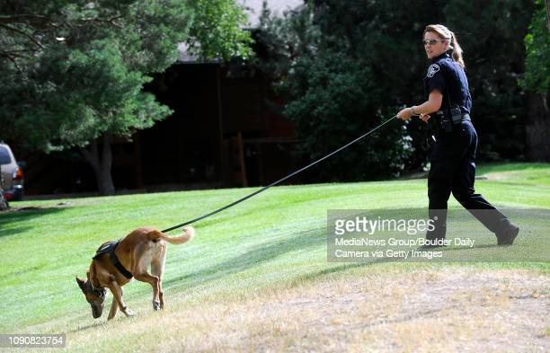 Boulder County Sheriff's Deputy Kelly Pohl walks with her dog Boomer searching for an armed robber who threatened a cashier and stole money from King...