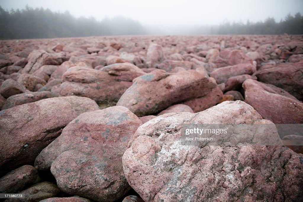 Boulder Field, natural phenomenon in Pennsylvania Hickory Run State Park : Stock Photo