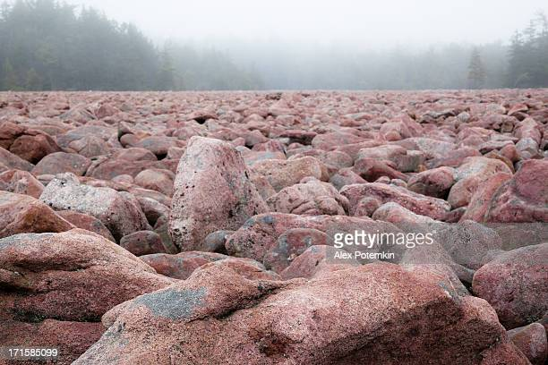 boulder field, natural phenomenon in pennsylvania hickory run state park - light natural phenomenon stock pictures, royalty-free photos & images