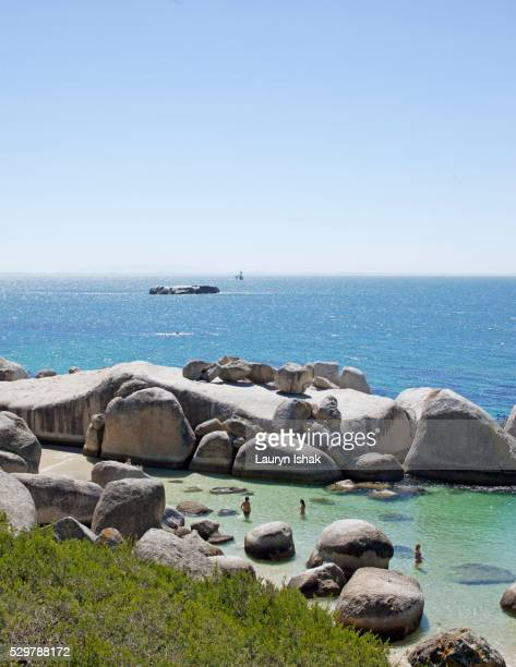 boulders beach - lauryn ishak stock pictures, royalty-free photos & images