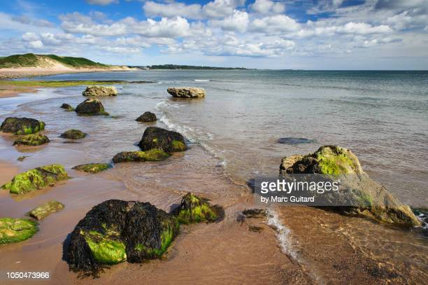 Boulders on Alnmouth Beach, Northumberland, England