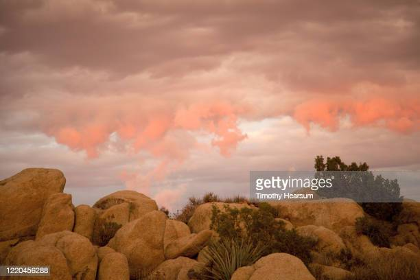boulders with late afternoon light and dramatic pink sky in joshua tree national park - timothy hearsum stock pictures, royalty-free photos & images
