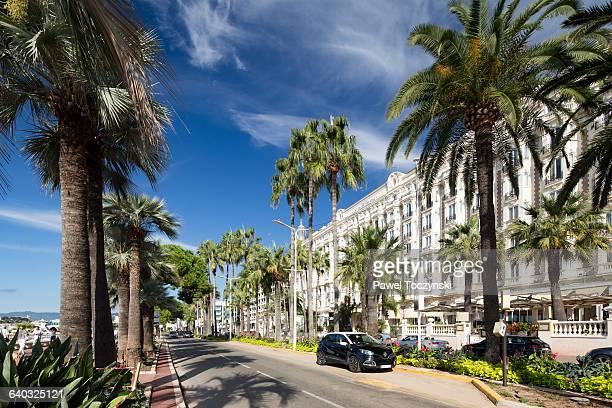 Boulevard de la Croisette, chic Cannes waterfront